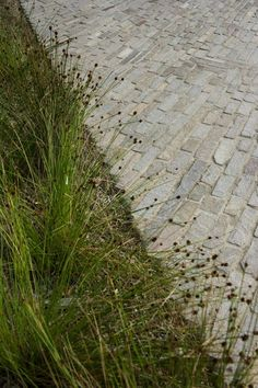 Eco Outdoor's new stone flooring range, Filetti, is an ideal paving product for driveways, large courtyard areas and curved paths. Crazy Paving, Natural Stone Flooring, St Kilda, Paving Stones, Natural Stones, Paths, Floors, Entrance, Sidewalk