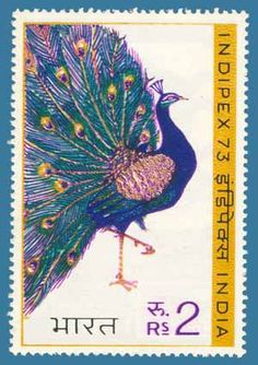 Indian rupee) postage stamp from 1973 featuring a peacock Jaipur Inde, Sri Lanka, Postage Stamp Design, Dancing Drawings, Love Stamps, Asian History, Vintage Stamps, Tampons, Stamp Collecting
