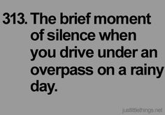 313. The brief moment of silence when you drive under an overpass on a rainy day.