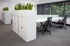 White commercial furniture. Modern design. Interior design. Open plan office. Sleek design. White storage. Office plants.