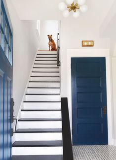 Updates to our most asked about home projects, including these black and white stairs! Black Painted Stairs, Black And White Stairs, Entry Stairs, House Stairs, Carpet Stairs, Villa, Staircase Design, Modern Staircase, Old Houses