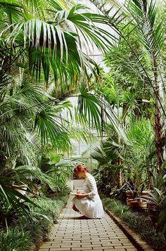 capturing nature | Flickr - Photo Sharing!