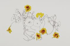http://louisebradley.files.wordpress.com/2013/03/c-nasturtium.jpg