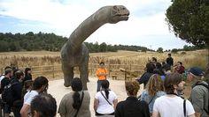 """DESCUBRIMIENTOS CIENTIFICOS (7 SEP 2013)            """"Descubren unas huellas de dinosaurios «únicas en el mundo» en la Sierra de la Demanda""""."""