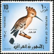 hoopoe stamp from Iraq