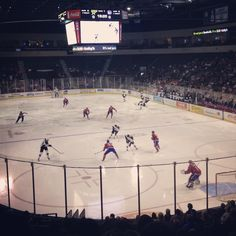 Attending a Texas Stars hockey game at Cedar Park Center