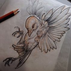 Ideas for drawing tattoo bird illustrations - - Tattoo Sketches, Drawing Sketches, Tattoo Drawings, Drawing Ideas, Kunst Tattoos, Body Art Tattoos, Bird Drawings, Animal Drawings, Vogel Tattoo