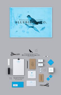 Bluebirds&Co. by Zdunkiewicz , via Behance | #stationary #corporate #design #corporatedesign #identity #branding #marketing < found on www.designinstruct.com pinned by www.BlickeDeeler.de | Visit our website: www.blickedeeler.de/leistungen/corporate-design