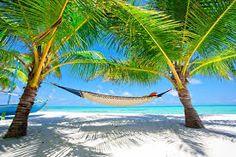 Bildergebnis für Karibik