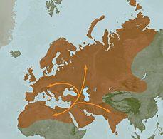 My maternal haplogroup - The Travelers - U5