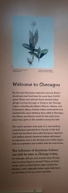 How the city Chicago got its name Chicago History Museum, Chicago City, Names