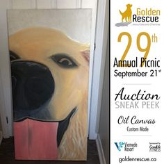 "Picnic Auction Sneak Peek! This original Oil on Canvas (48""x24"") was generously donated by Christine Baayen and is just one of the spectacular items up for auction at this year's picnic. Make sure you're there so you don't miss out! ***If you are bringing an auction item to the picnic, please email sa@goldenrescue.ca with the information. We need to ensure we have this information ahead of time so that we can have the bid sheets ready and items listed on the auction list. Thank you!!*** For… Auction Items, Oil On Canvas, Life Is Good, Picnic, Life Is Beautiful, Picnics"