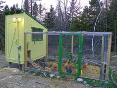 34 Chicken Coop Plans You Can Build by Yourself (100% Free)   Downeast Thunder Farm Chicken Coop