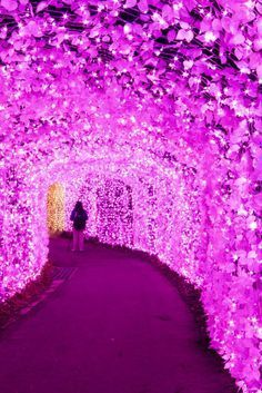A flower tunnel in J