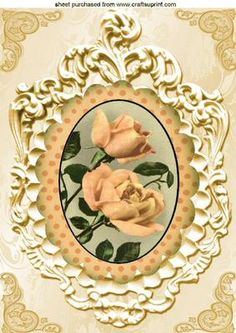 PEACH ROSE IN ORNAMENTAL FRAME A4 on Craftsuprint - Add To Basket!