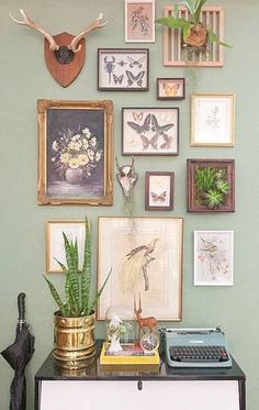 gallery wall art framed succulents