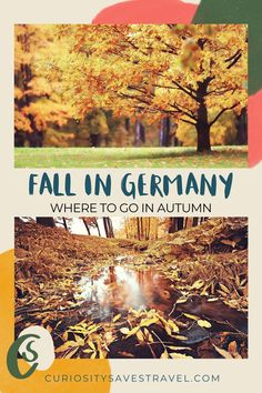 Are you planning to travel to Germany in the Autumn? Here are 11 reasons why you south visit Southern Germany in the fall! It's the best fall destination in Germany! I things to do in Germany I Germany travel I what to do in Germany I where to go in Germany I places to go in Germany I Germany in September I Germany destinations I Germany in October I what to do in Southern Germany I fall in Southern Germany I Germany in autumn I fall in Germany I autumn in Germany I #Germany #falltravel