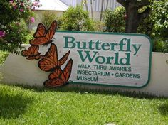 Butterfly World in Broward County Florida is located in Tradewinds Park in the city of Coconut Creek.