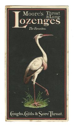Trade Card Moore's Throat Lung Lozenges Medicine Coughs BIRD Moore New York