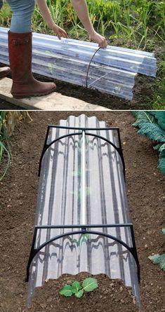 Garden Yard Ideas, Lawn And Garden, Garden Projects, Farm Gardens, Outdoor Gardens, Backyard Greenhouse, Vegetable Garden Design, Garden Structures, Edible Garden