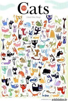 99 kotów i pies :)  -