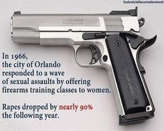 Gun is not the problem, it is the answer ?