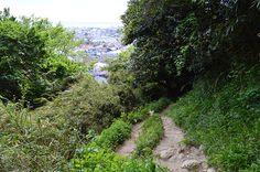 Gion'yama Hiking Trail 鎌倉中心部にほど近い手頃な登山。祇園山ハイキングコース   鎌倉トリップ   秋の週末は鎌倉観光。ユニークな鎌倉散策のご提案。