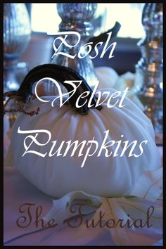 StoneGable: POSH VELVET PUMPKIN TUTORIAL Check out this tutorial on how to make velvet pumpkins. Crafty One! Two thumbs up!