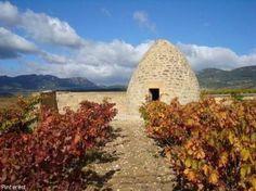 Położony nad rzeką Ebro, jeden z najbardziej znanych regionów winiarskich Hiszpanii. Co 8 winnica na tym obszarze to uprawa Tempranillo. Wytwarzane z nich wino starzone jest w dębowych beczkach nawet ponad dwa lata. Otrzymane w ten sposób Gran Reserva to najlepsze wina w Hiszpanii. Wino czerwone obfituje w dojrzałe, truskawkowe i malinowe smaki, połączone z klasyką francuskiego dębu oraz zapachem wanilii i tostów. Często łączy się je z Cabernet Sauvignon. Jednak w Rioja produkuje także wina…