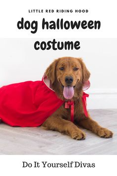 do it yourself divas: DIY Little Red Riding Hood Cloak Halloween Costume for Dog or Pet - Video Tutorial Best Dog Costumes, Dog Halloween Costumes, Pet Costumes, Costume Ideas, Dogs Golden Retriever, Retriever Dog, Red Riding Hood Costume, Diy Stuffed Animals, Little Red