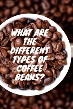 This post will show you how many coffee beans there are in an espresso shot. Types Of Coffee Beans, Different Types Of Coffee, Types Of Beans, Highlands Coffee, Espresso Shot, Coffee Type, Almond, Health Practices, Nude Eyeshadow
