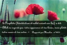 le Prophète (bénédiction et salut soient sur lui) a dit: « Allah ne regarde pas votre apparence et vos biens , mais plutôt votre coeur et vos actes. » (rapporté par Mouslim n°4651).