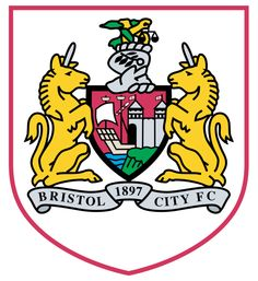 Bristol City FC Thank you for making our sons day as mascot so special,  he loved every minute of it.