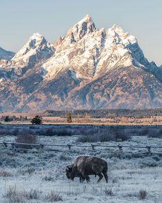Grand Teton National Park Wyoming, USA