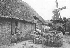 Een mooi plaatje uit 1915 in Vlijmen. De altijd bezige boerin is water aan het putten. Bij de put een rek met geschuur-de klompen, een Keulse pot en een melkkan. In het raampje van de boerderij slaan twee meis-jes het tafereel gade, ter-wijl op de achtergrond de boer, omsloten door hooi-mijten, aan het werk is. Op de achtergrond de oude stellingmolen van v.d. Wiel. De molen is in 1953 ge-sloopt; de laatste eigenaar was F.J. Kools.