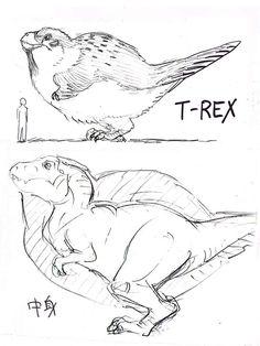 村田雄介 @NEBU_KURO | 羽毛付きT-REXの最新復元図はこちら。
