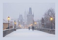 Praha-24.1.2014