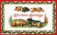 Vintage Art Cute Christmas Pigs Hold Holiday Calling Card New Xmas Note Cards | eBay