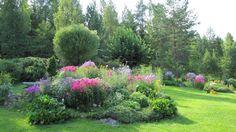 Kaunein puutarha -kilpailun voittajapuutarha