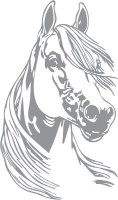 Glass etching stencil of Horse Portrait. In category: Horses