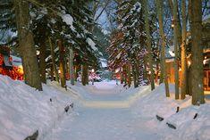 Snowy Day, Aspen, Colorado photo via alyxsis Wonderful Places, Beautiful Places, Amazing Places, Places To Travel, Places To See, Aspen Colorado, Mall, Winter Magic, Snowy Day