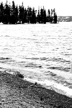 Water. Trees. Beach. Mountains. Utah. Black and white. High Contrast. Photo by Harvey Brand Imagery