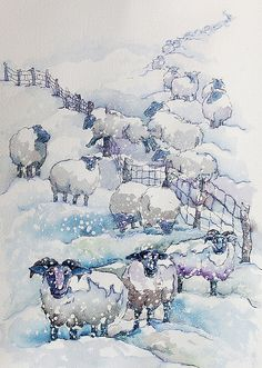 sheep watercolor -- love it