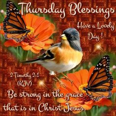 💛Good Morning Everyone💛Blessed Thursday!💛I pray that you have a safe and blessed Timothy Good Morning Thursday Images, Good Thursday, Thursday Quotes, Thursday Morning, Good Morning Everyone, Good Morning Good Night, Thankful Thursday, Tuesday, Good Morning Massage
