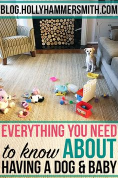 Dogs and Babies: We had a dog for three years before having a baby. Learn everything to know about having a dog and a baby. Dogs and babies can get along with these tips. Make More Money, Make Money From Home, Earn Money, Stock Photo Sites, Dog Rooms, Time Activities, Dog Hacks, Traveling With Baby, Baby Dogs