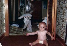 This dog who's been outdone by this baby. | The 26 Most Awkward Animals On The Internet