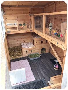 New Pet Rabbit Indoor Bunny Cages Ideas - Rabbit Hutches: Outdoor & Indoor Rabbit Hutche Models Bunny Sheds, Rabbit Shed, House Rabbit, Pet Rabbit, Rabbit Cage Diy, Diy Bunny Cage, Indoor Rabbit House, Rabbit Run, Indoor Rabbit Cages