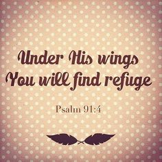 He will cover you with his feathers, and under his wings you will find refuge; his faithfulness will be your shield and rampart. ~ Psalm 91:4