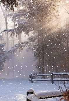 #Winter Scene