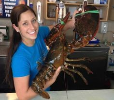 Larry the Lobster  Man Buys 80-Year-Old Lobster From Restaurant Tank To Set It Free